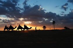 E' festa tra le dune sahariane