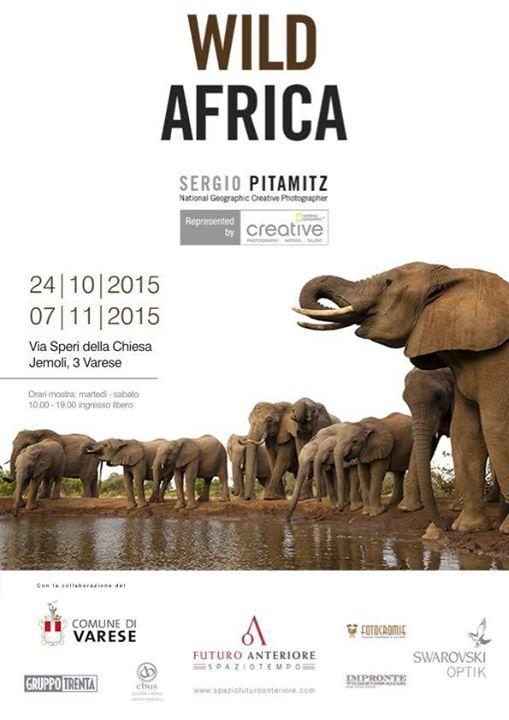 Wild Africa locandina Pitamitz