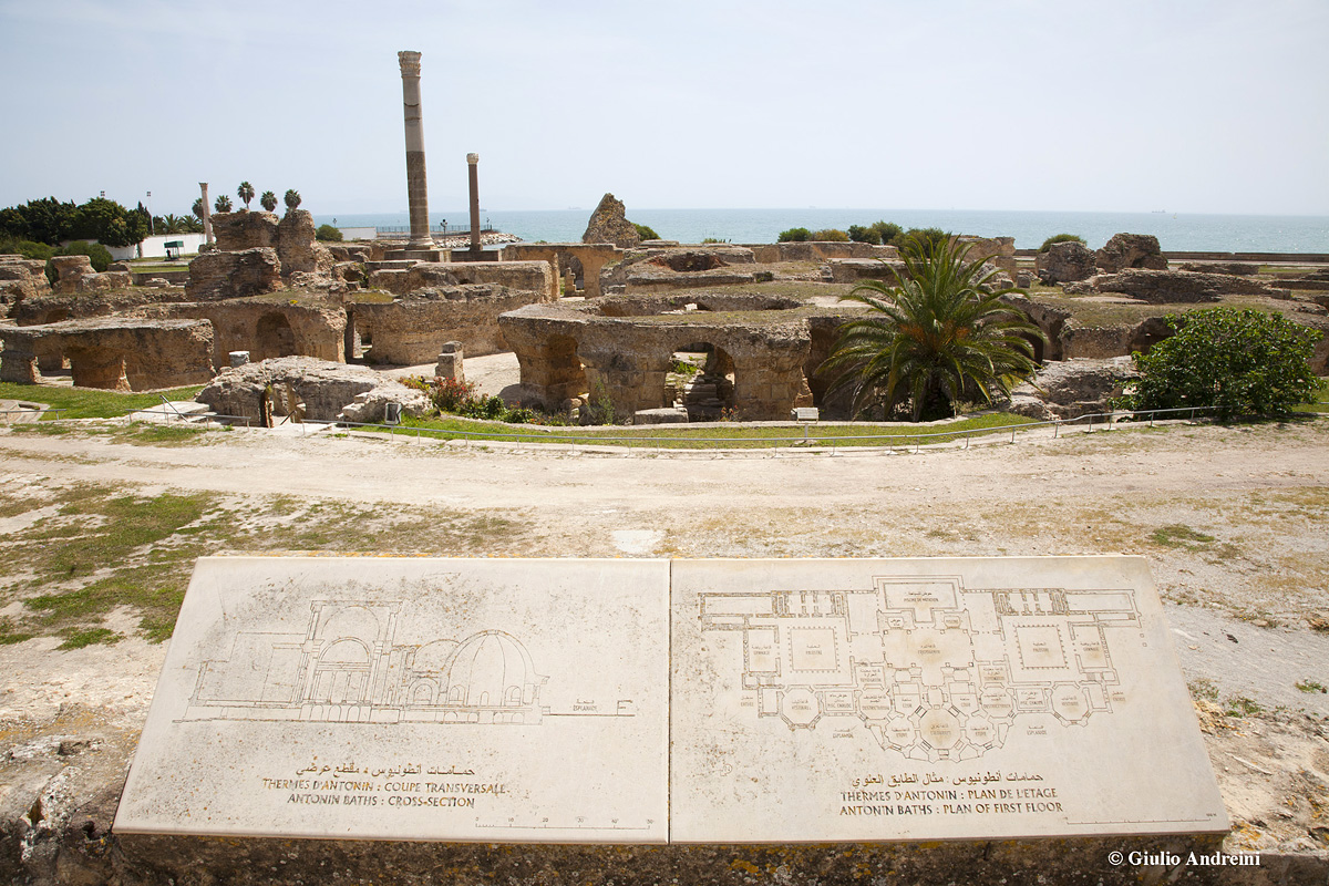 Cartagine, Terme di Antonino Giulio Andreini